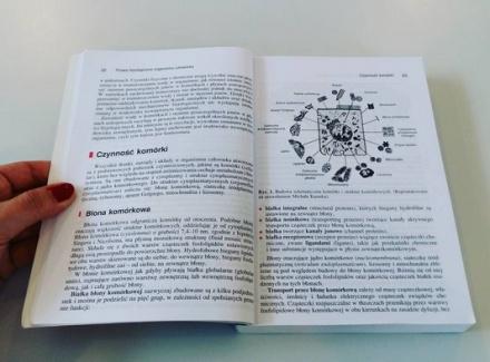 studia6